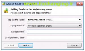 webmoney-paymer-2