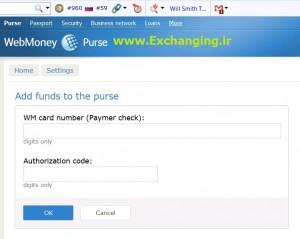 webmoney-paymer-5